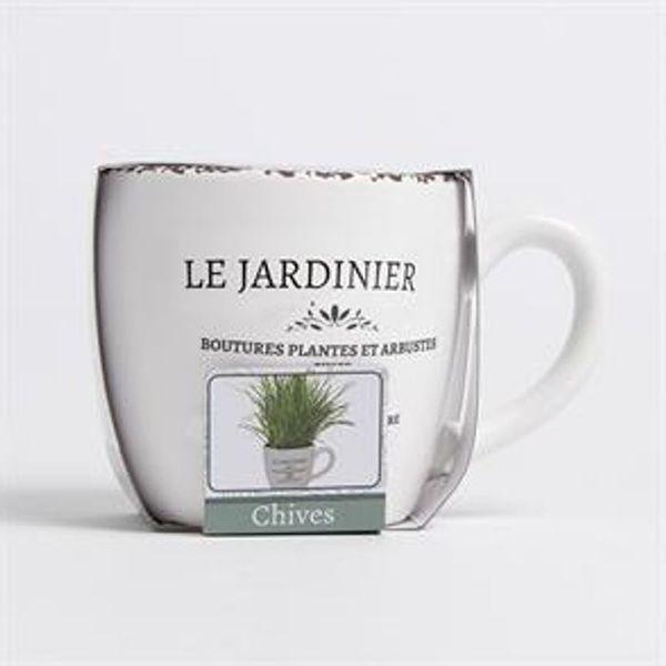 Save 44% - Bee's Seeds: Le Jardinier Herb Grow Set - Basil